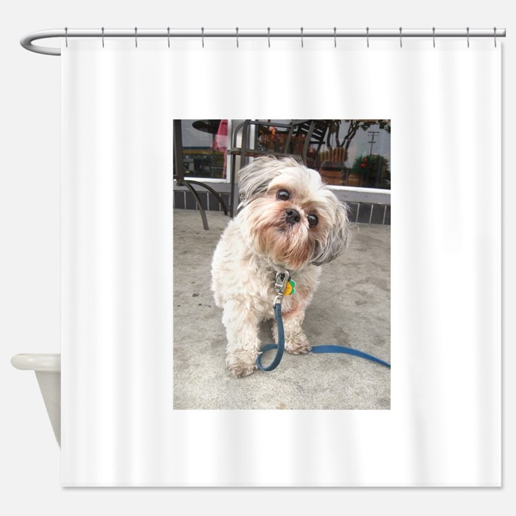 Lhasa Apso Shower Curtains