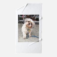 dog on leash at cafe Beach Towel