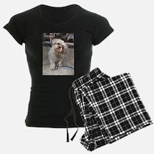 dog on leash at cafe Pajamas