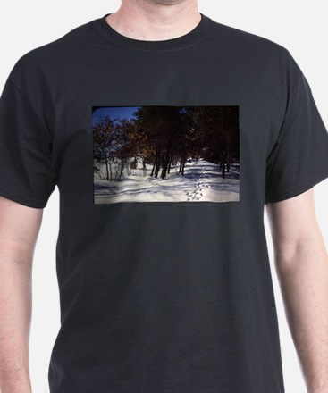 old view winter snow landscape with trees T-Shirt