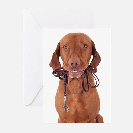 Cool Vizsla dog Greeting Cards (Pk of 10)