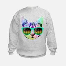 Rainbow Music Cat Sweatshirt