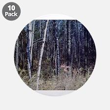 "PICT0050.JPG birch grove in 3.5"" Button (10 pack)"