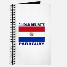 Ciudad del Este, Paraguay Journal