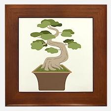 Bonsai Tree Framed Tile