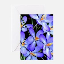 Blue Wildflower Greeting Cards