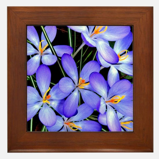 Blue Wildflower Framed Tile