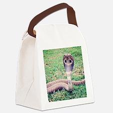 Unique Snakes Canvas Lunch Bag