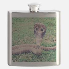Unique Mallard Flask