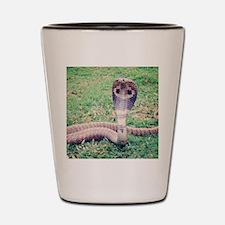 Funny Animal Shot Glass