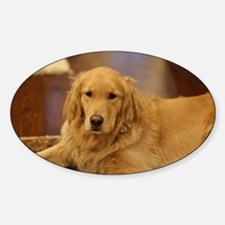 Nala the golden inside Decal