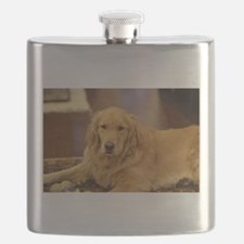 Nala the golden inside Flask