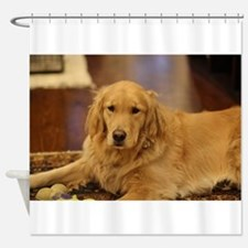 Nala the golden inside Shower Curtain