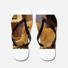 Nala the golden inside Flip Flops