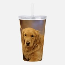 Nala the golden inside Acrylic Double-wall Tumbler