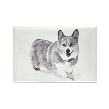 Red and White Welsh Corgi in the Snow Magnets