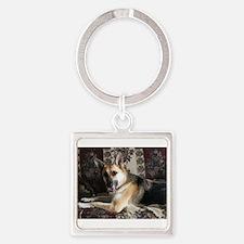 Tara the Diva Dog Keychains