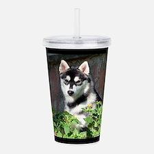 Alaskan Malamute Dog O Acrylic Double-wall Tumbler