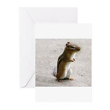 Cool Chipmunks Greeting Cards (Pk of 20)