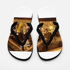 traditional nativity scene Flip Flops