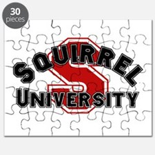 Squirrel University Puzzle
