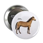 American Quarter Horse Button