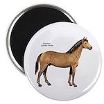 American Quarter Horse 2.25