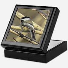 Chickadee Bird Keepsake Box