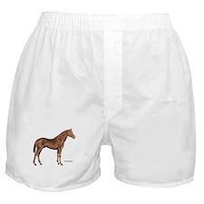 Thoroughbred Horse Boxer Shorts