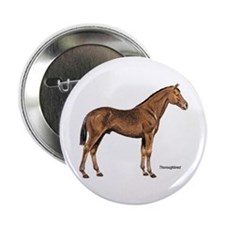 """Thoroughbred Horse 2.25"""" Button (10 pack)"""