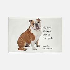 Bulldog v Wife Magnets