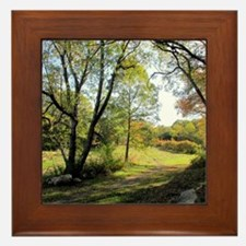 Out of the Woods Framed Tile
