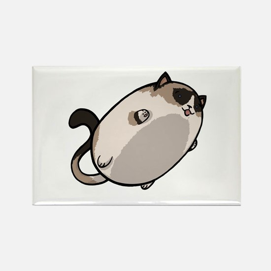 Flying Cat - Snowshoe Rectangle Magnet