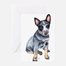 Cattle Dog Greeting Cards (Pk of 10)
