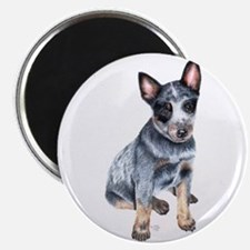 Australian Cattle Dog Magnet