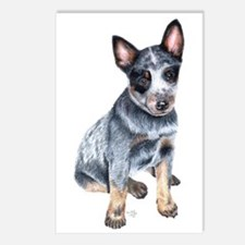Cattle Dog Postcards (Package of 8)