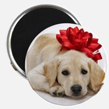 Yellow Lab Puppy Magnets