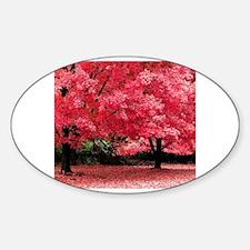 Cool Under 25 Sticker (Oval)