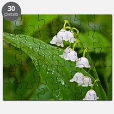 Cute Lily of the valley Puzzle