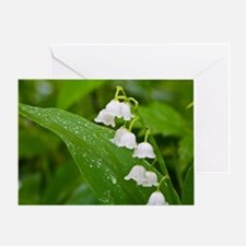 Unique Lily of the valley Greeting Card
