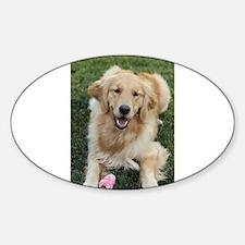 Nala the golden retroever dog Decal