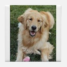 Nala the golden retroever dog Tile Coaster