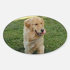 Cute Blonds Sticker (Oval)