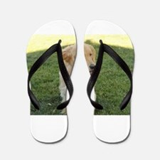 golden on grass Flip Flops