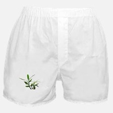 green lucky bamboo leaves. Boxer Shorts