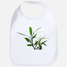 green lucky bamboo leaves. Bib