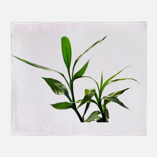green lucky bamboo leaves. Throw Blanket