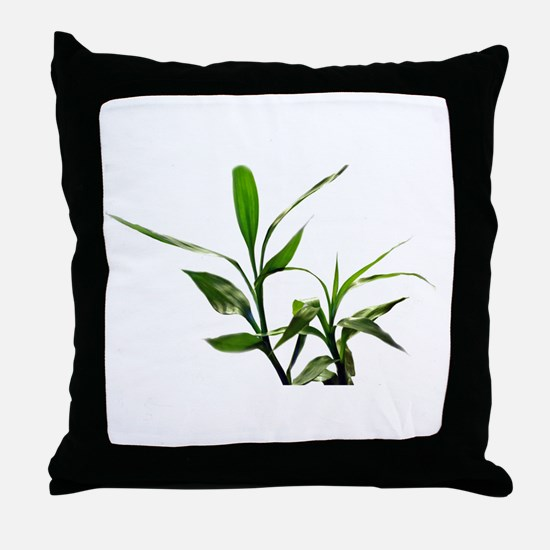 green lucky bamboo leaves. Throw Pillow