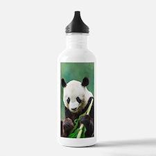 Painting Panda Bear Long Hui Water Bottle