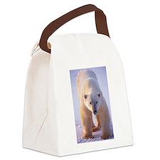 Big Boy Polar Bear Canvas Lunch Bag